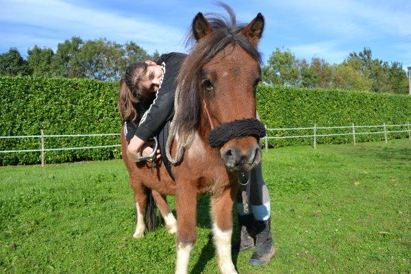 séance avec les poneys