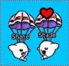 Shane-bbl