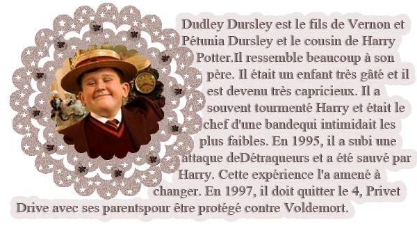 La tante Pétunia disait souvent que Dudley avait l'air d'un chérubin - et Harry disait souvent qu'il avait l'air d'un cochon avec une perruque.