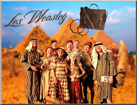 """""""Harry ne connaissait personne qui, plus que les Weasley, ait mérité de gagner un joli tas d'or. Ils étaient en effet extrêmement pauvres et d'une générosité sans égale."""""""
