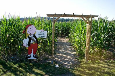 Une famille se perd dans un labyrinthe de maïs