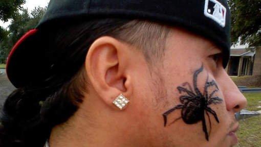 Une option radicale pour vaincre son arachnophobie