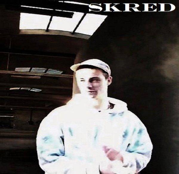 le mauvais virage / appelle moi skred (2012)
