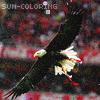 Benfica vai pegar
