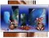 ๑ Ѽ๑ Ѽ ๑ Ѽ๑ Ѽ Le Monde des rêves..๑ Ѽ๑ Ѽ ๑ Ѽ๑ Ѽ