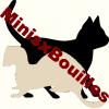 MinisxBouilles