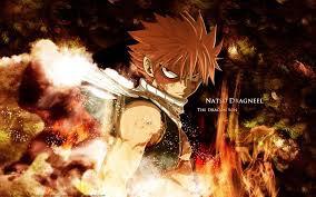 Fairy Tail Biographie de Natsu Dragneer