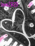 Photo de love2929
