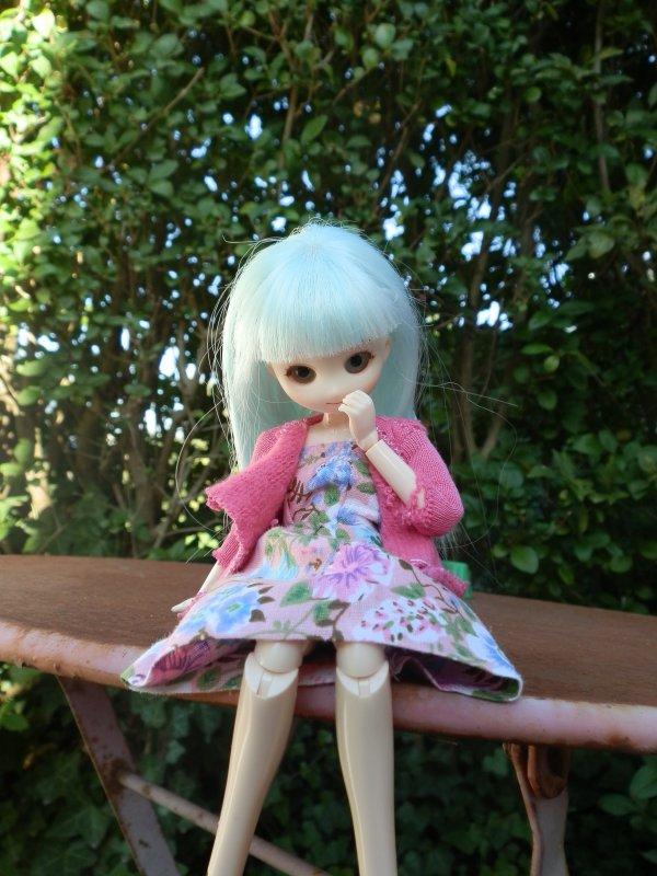 Présentation ds mes dolls