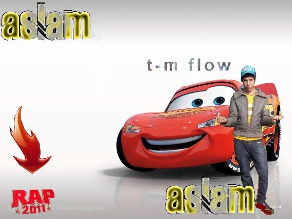 T-M FLOW  2011