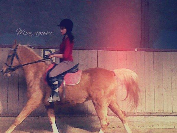 . Bienvenue On She-isxMy-Hapiness.Skyhorse.com. ♞ .