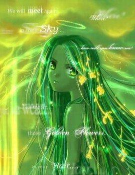 special vert