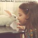 Photo de ChouxPinoux
