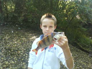 grosse perch de thomas