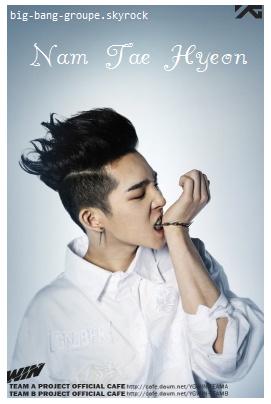Fiche n°3 - Nam Tae Hyeon