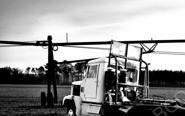 Camions des bois et des champs ...