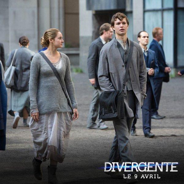 #Divergente les présentations de Natalie et Andrew + une photo