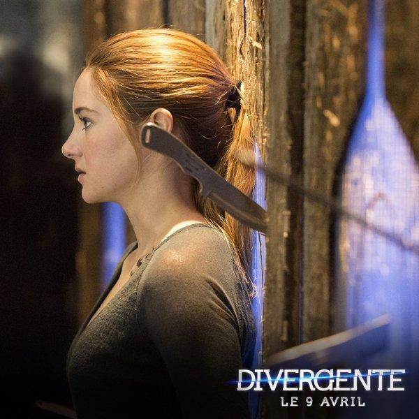 #EDIT #Divergente ajout de la carte d'identité d'Al