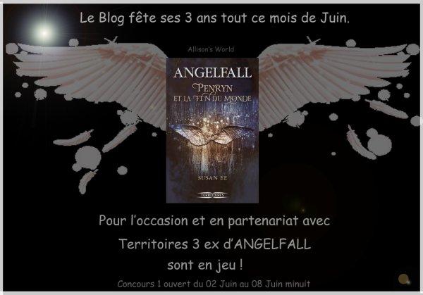 [CONCOURS 1] Gagne ton exemplaire d'ANGELFALL de Susan EE #Résultats