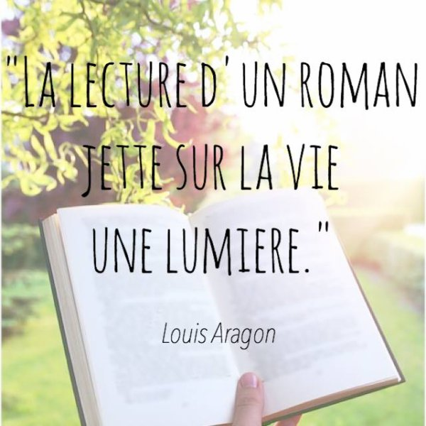 Une citation de Louis Aragon tellement réaliste ...
