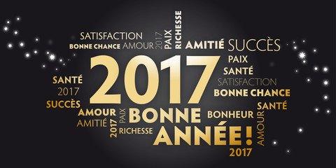 Je vous souhaite une très bonne année 2017 les amis  :)
