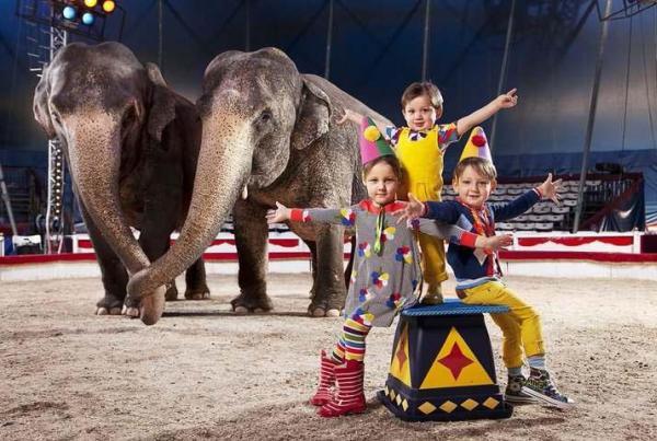CIRQUE-PARC ELEPHANTASTIQUE : C'EST FINI !