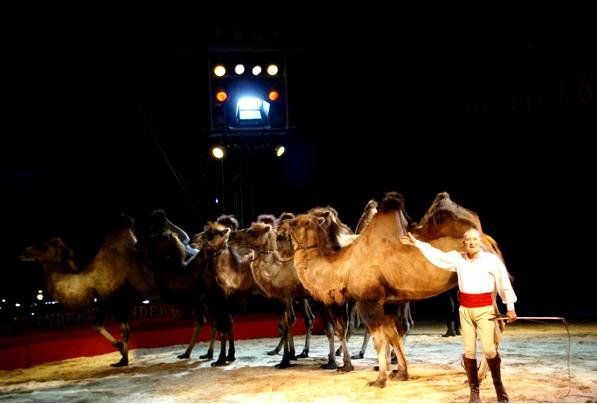 PINDER 2012 : LE SPECTACLE (1)