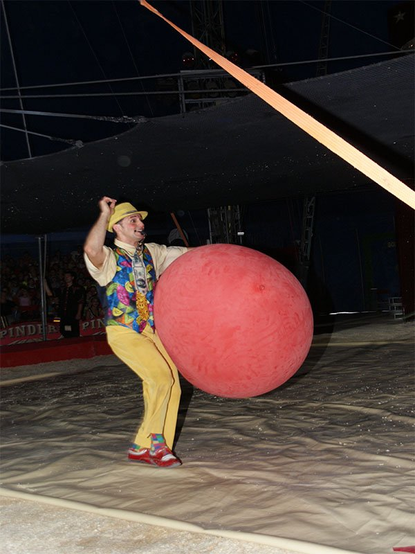 CIRQUE PINDER : LE SPECTACLE 2014 (11)