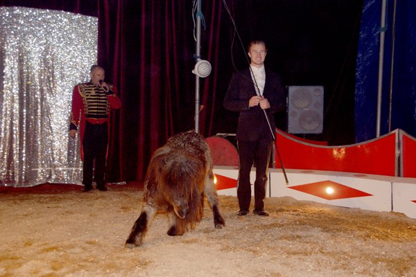 ZOO CIRCUS : LE SPECTACLE02