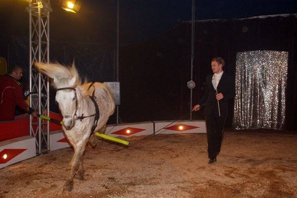 ZOO CIRCUS : LE SPECTACLE01