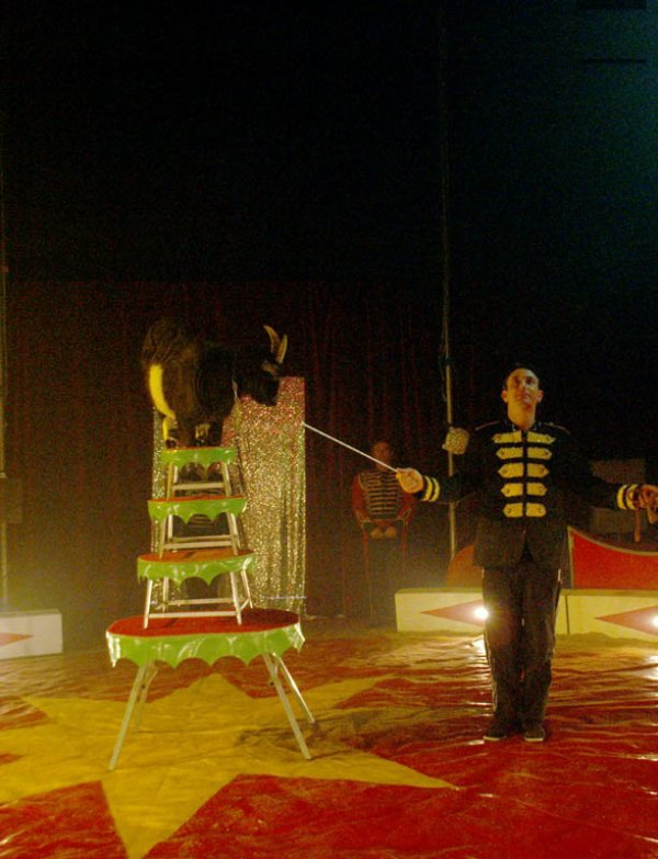 ZOO CIRCUS : LE SPECTACLE05