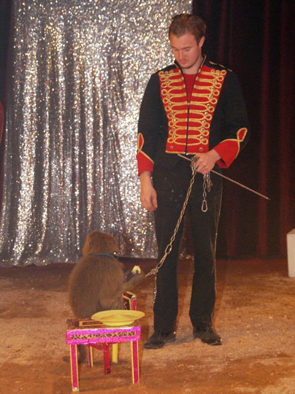 ZOO CIRCUS : LE SPECTACLE07