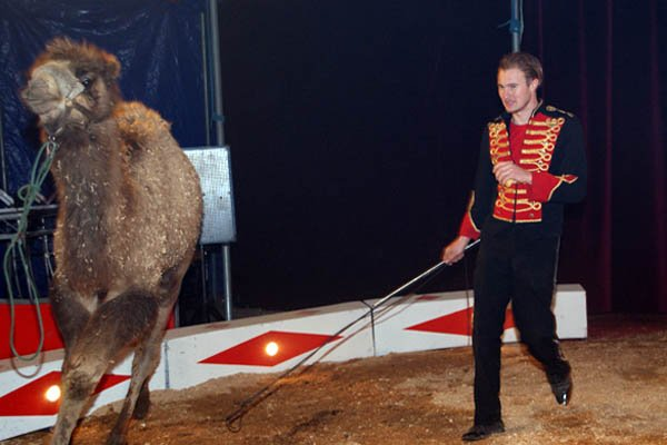 ZOO CIRCUS : LE SPECTACLE10