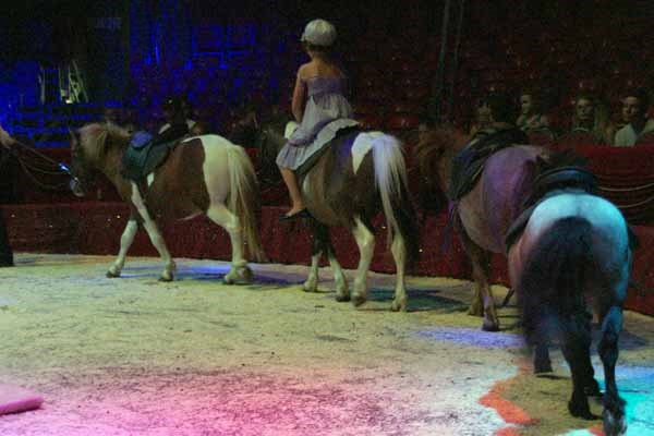 """MEDRANO : """"ALADIN"""" LE SPECTACLE 22"""