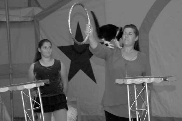 CIRQUE AZURIAS LE SPECTACLE 07