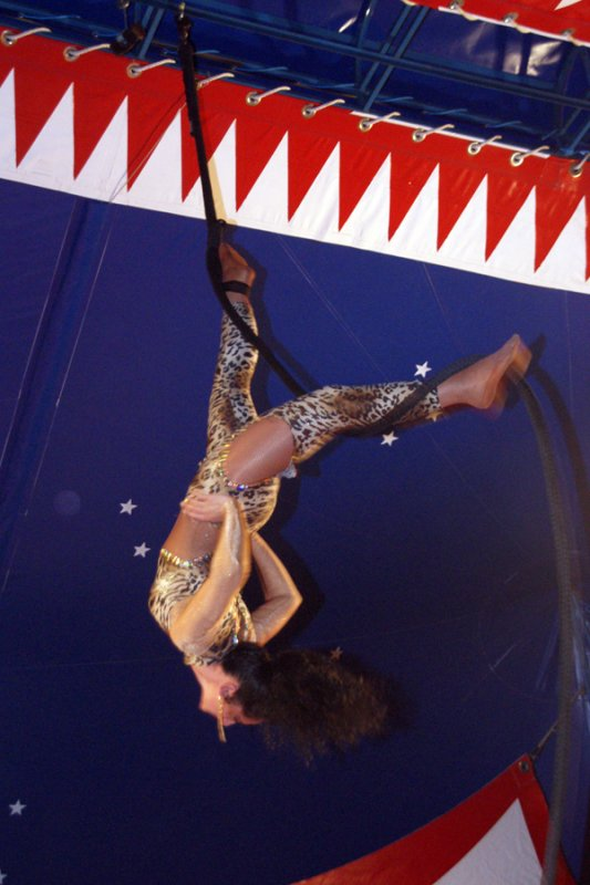 CIRQUE PREIN : LE SPECTACLE 04