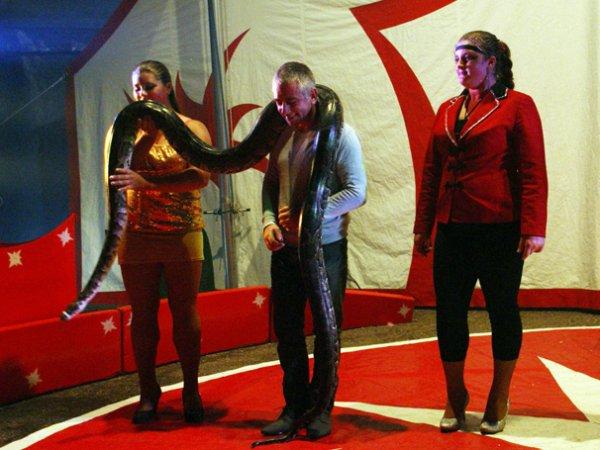 AZURIAS CIRCUS : LE SPECTACLE 17