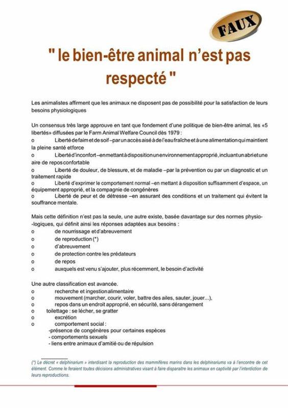 FESTIVAL DE MONTE-CARLO - REACTIONS.01