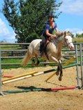 Photo de MyLife-With-Horses