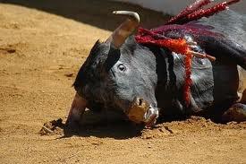 Sauvons les animaux en voix d'extinction.