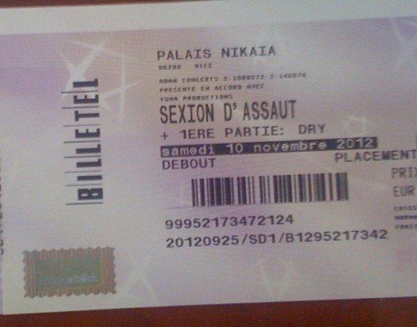 """Concert de Sexion D'assaut """"Heyyyyy Sa Ouiiiiiiii """""""