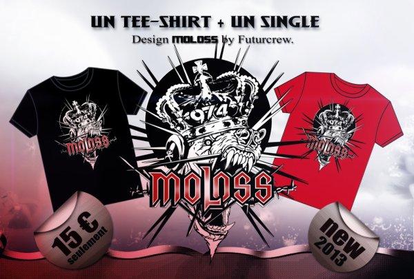 Nouveau Modèle teeshirt MOLOSS Futurcrew - Konix/Roko. 2013