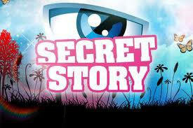 Jeux virtuel (Secret Story)