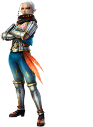 Administratrice et Modérateur de la Team-Hyrule