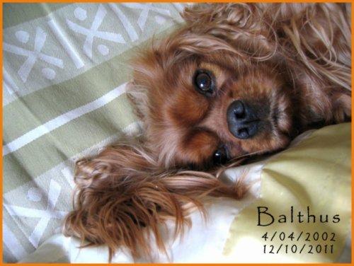 Au revoir Balthus