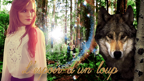 L'espoir d'un loup