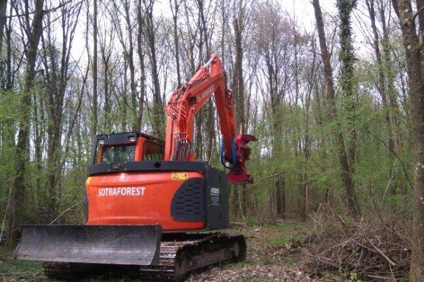 suite de travail forestier