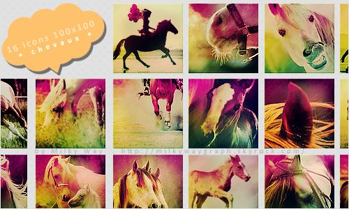 icons chevaux