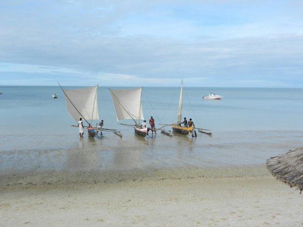 MADAGASCAR 2... Non 2012 :P