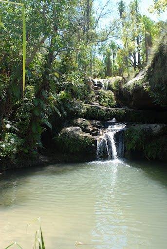 MADAGASCAR 2... Non 2012 :P Suite .. 1